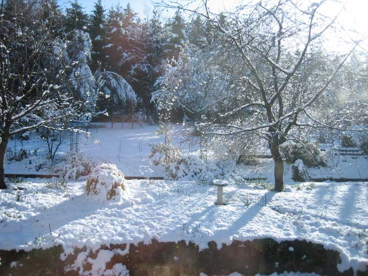 Winter - Gardening mistakes maintaining garden winter ...